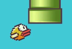 collision entre l'oiseau et le tuyau